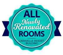 Newly Renovated Rooms!